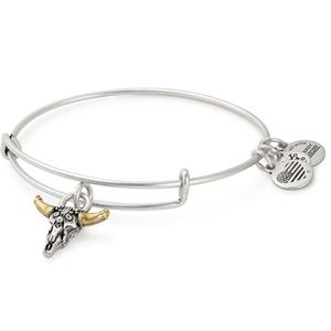 Silver Spirited Skull Charm Bangle strength New